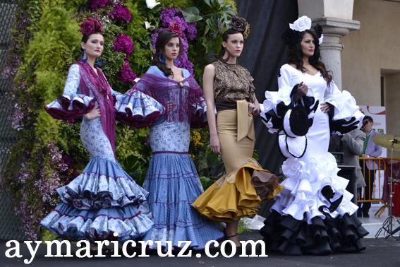 Recuerdos de Andújar Flamenca 2014