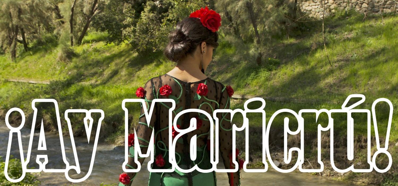 La Flamenca que miró al 2014