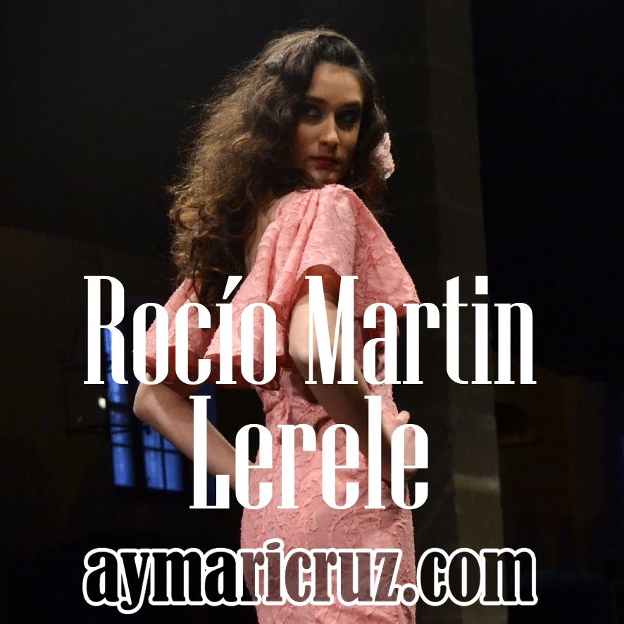 Rocío Martín Pasarela Flamenca Jerez 2015 39