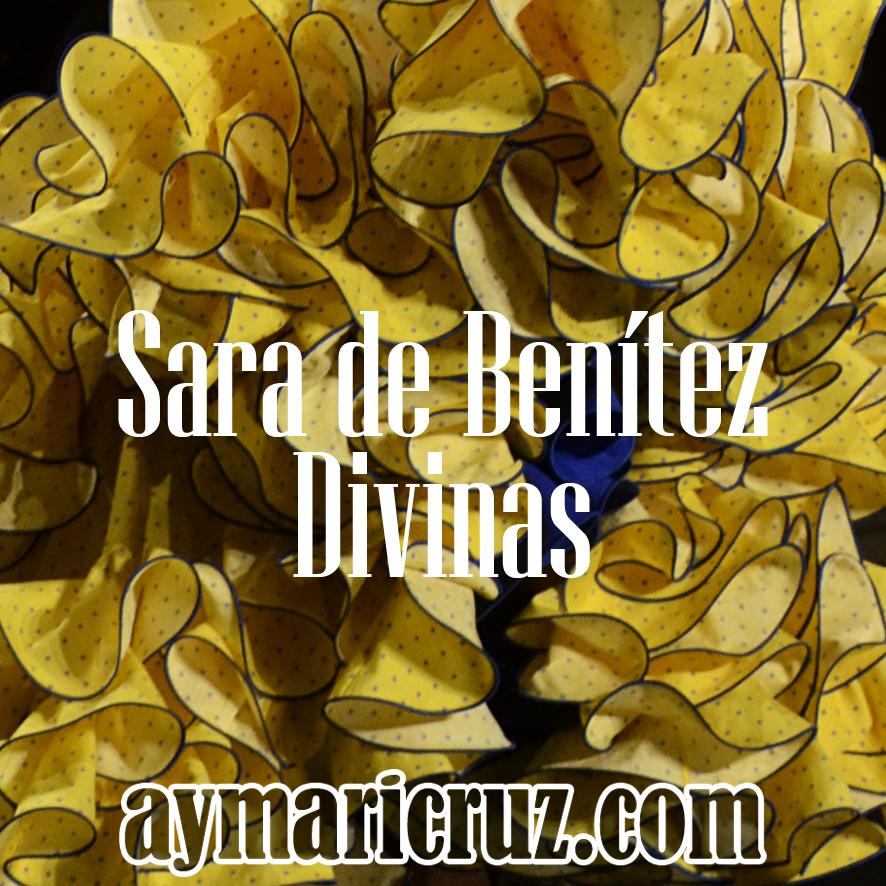 Sara de Benítez SIMOF 2015 32