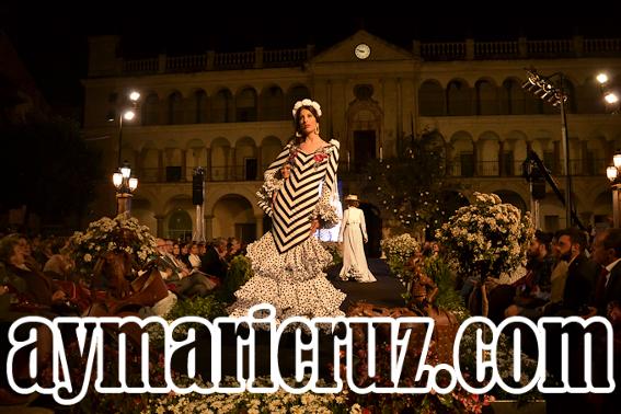 Viernes Andújar Flamenca 2015 26