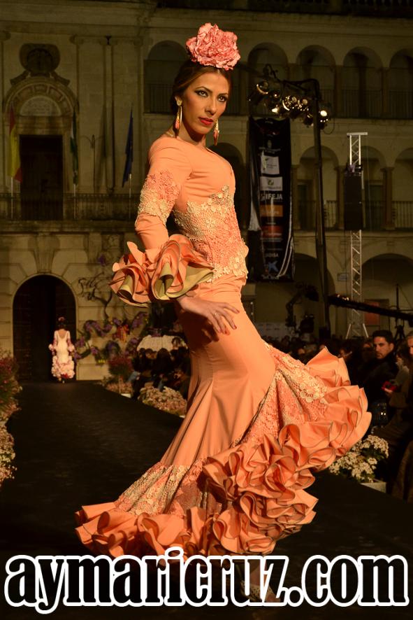 Sábado Andújar Flamenca 2016 25