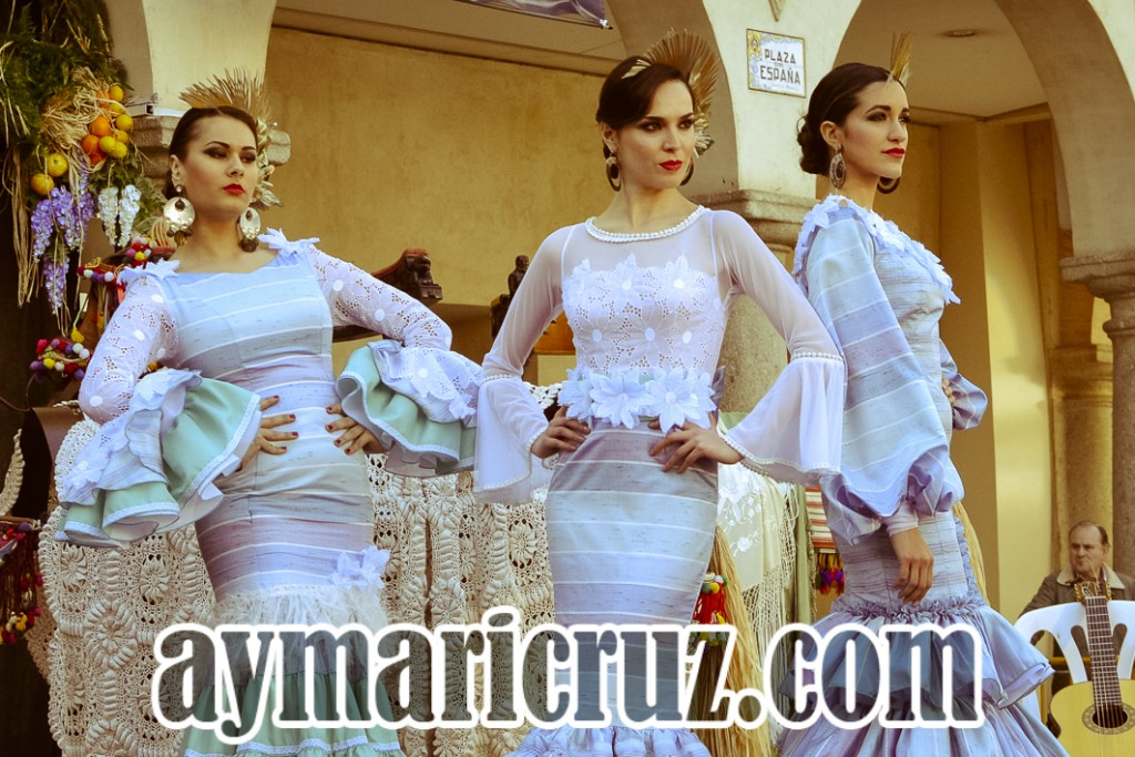 Andujar Flamenca 2016 Repaso Sábado (1)