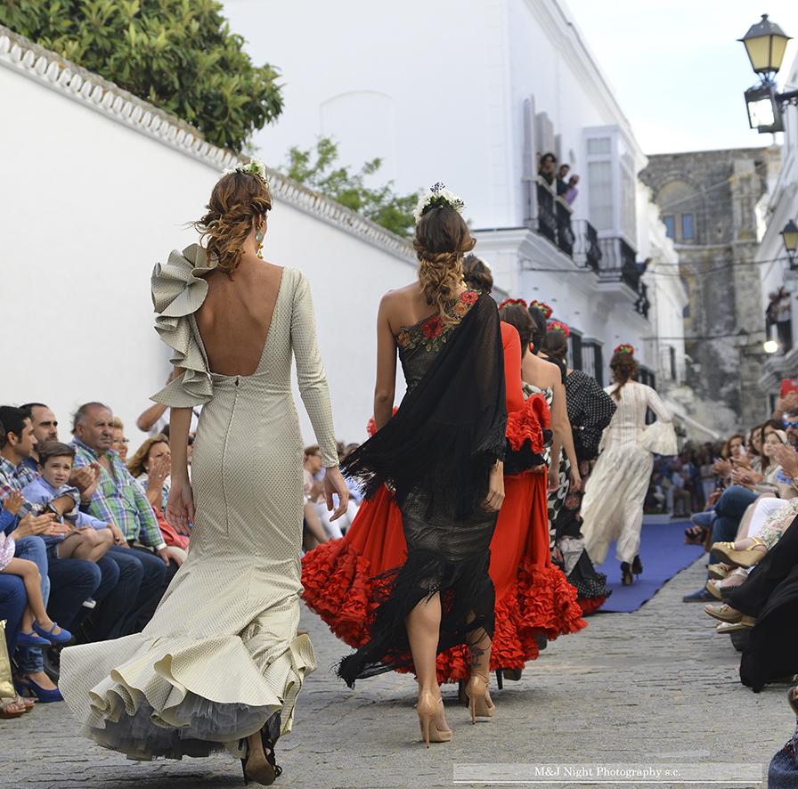 Vejer Flamenco en imágenes