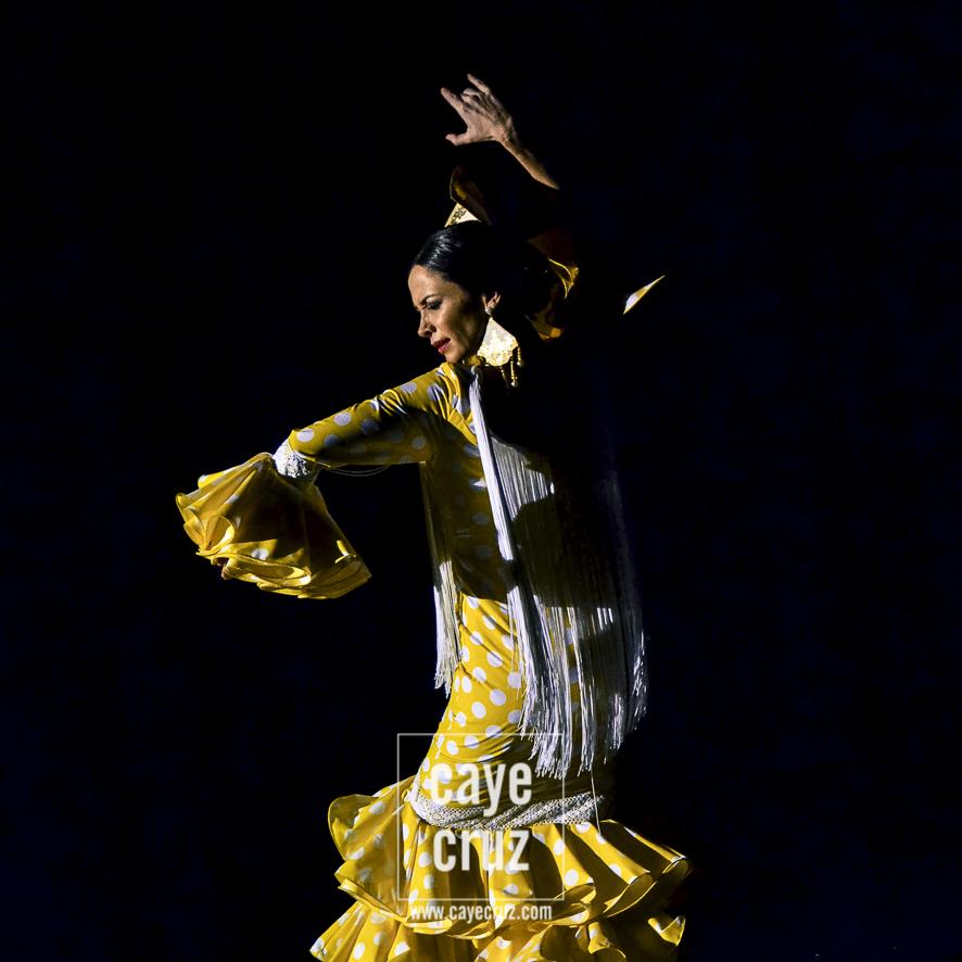Andújar Flamenca 2017 1