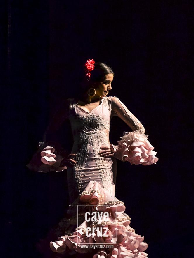 Andújar Flamenca 2017 11