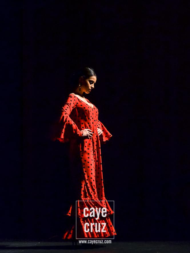 Andújar Flamenca 2017 20