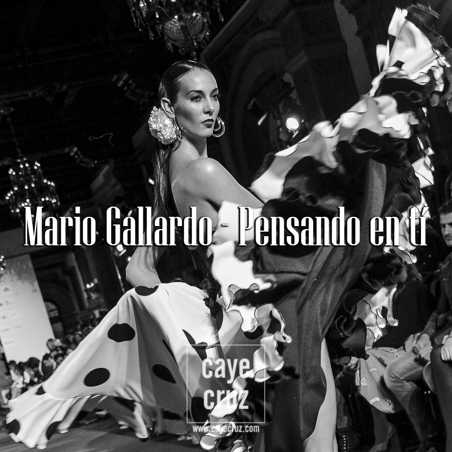 Mario Gallardo We Love Flamenco 2017 37