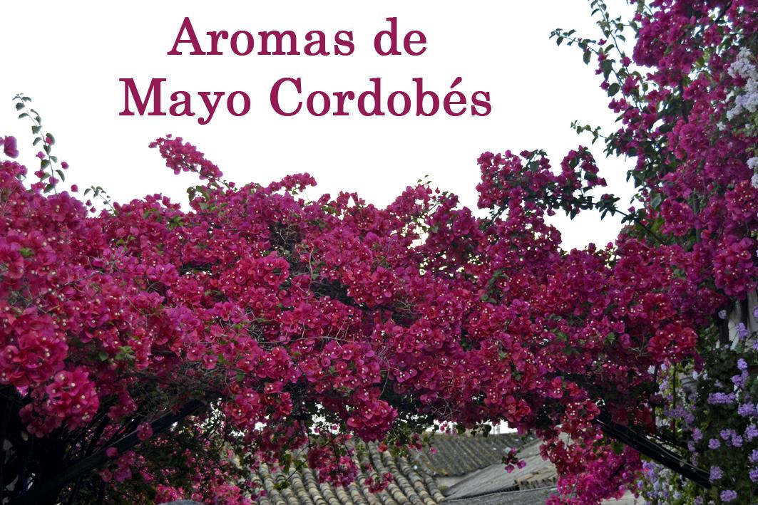Aromas de Mayo Cordobés