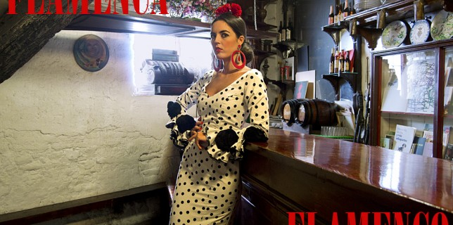 Flamenca Flamenco (1)